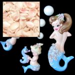 Small Natural Apple Blossom Shells - Sailor Valentine Mermaids